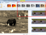 Export Formats in Windows Live Movie Maker - What to Choose & How to Do It