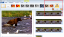 Windows Live Movie Maker: Transitions versus Effects